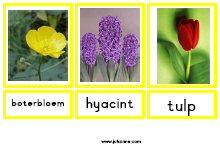 Nieuw Thema Bloemen Jufsanne Com