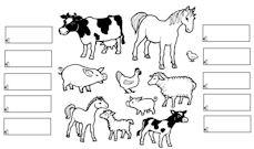 Kleurplaat Paard Kleuter Lente Downloads Jufsanne Com