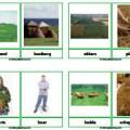 fotowoordkaartenboerderij