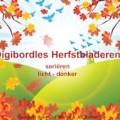 herfstles01