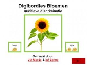 digibordles_bloemen_woordstukjes