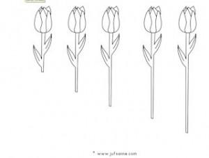 tulpenlangkort01