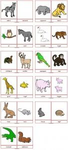 woordkaarten01