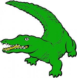 krokodilk1