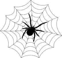 Gratis Kleurplaten Spinnen.Kleurplaat Spinnenweb Malvorlage Spinnennetz Mit Spinne Ausmalbild