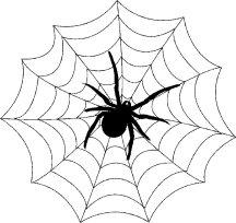 spininweb1
