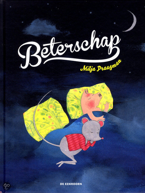 Beterschap Book Cover