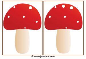 paddenstoelen_herfst_tellen01-page-004
